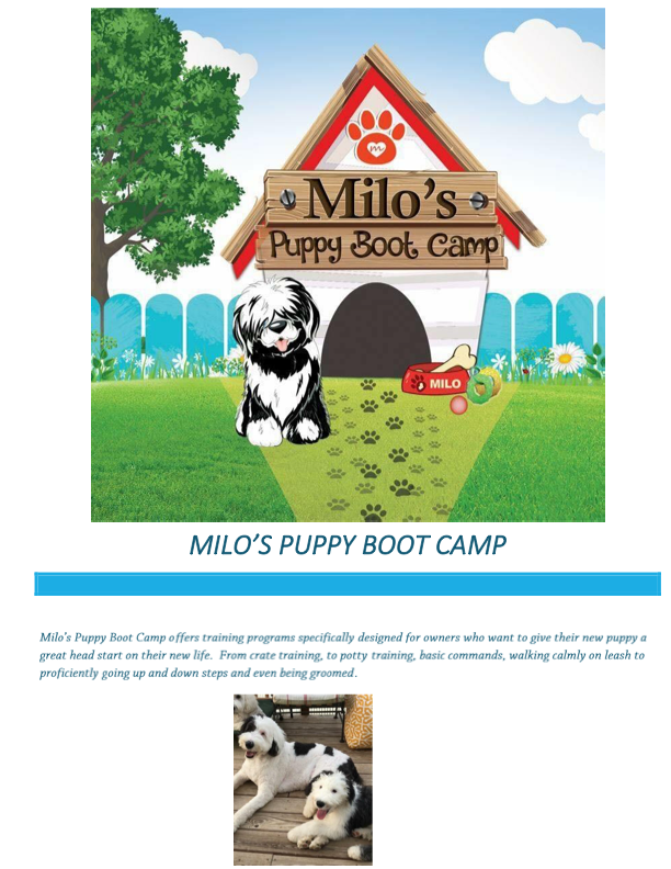 Milo's boot camp 9-13-18 (dragged)